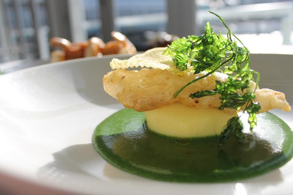 Dockside-Wellington-Fish
